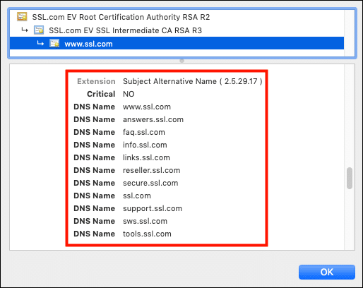 Certificate with multiple SAN entries
