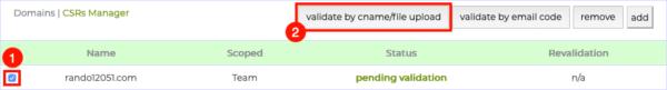 validate by cname/file upload